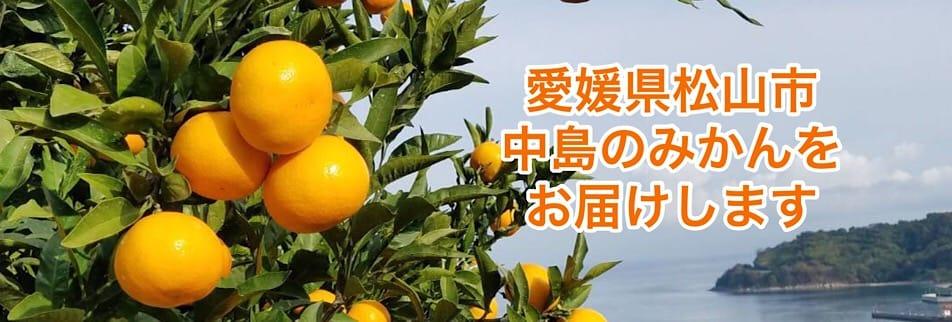 愛媛県松山市「出張治療・トレーニング指導」【忽那和幸】&愛媛県中島のおいしいみかん・いよかん【くつな農園】